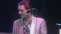 Without You (Wiener Festwochen Konzert, 15.05.1985) (Live) - Falco