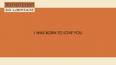 I Was Born To Love You (Lyric Video) - Ray LaMontagne