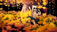 FRIENDS (Alternative Music Video) - Marshmello, Anne-Marie