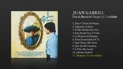 Manãna Te Acordaras (Cover Audio) - Juan Gabriel