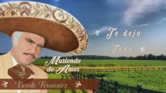 Te Dejo Todo (Cover Audio) - Vicente Fernández