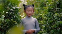 Chắp Tay Niệm Phật - Dương Nghi Đình