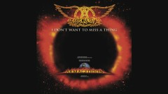 I Don't Want to Miss a Thing (Audio)