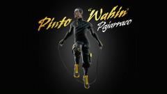 Pajarraco (Audio) - Pinto
