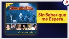 Sin Saber Que Me Espera (Cover Audio En Vivo) - Diomedes Díaz