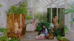 Dear Diary - Yeri (Red Velvet)