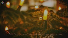 The Candles Twinkle On The Christmas Tree - Richard Clayderman
