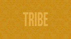 Tribe (Audio) - Jidenna