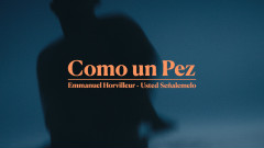 Como un Pez (Official Video) - Emmanuel Horvilleur, Usted Senã́lemelo
