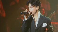 Musicology (Live At Webster Hall - April 20, 2004) - Prince