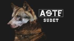 Sudet (Audio) - Aste