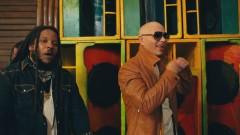 Options - Pitbull, Stephen Marley
