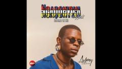 Ngaqonywa (Remix) - Aubrey Qwana, DJ Tira