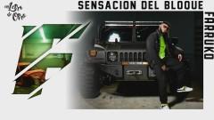 Sensacíon del Bloque (Audio) - Farruko