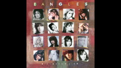 In a Different Light (Audio) - The Bangles