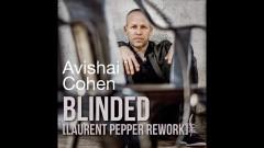 Blinded (Laurent Pepper Rework) (Audio) - Avishai Cohen