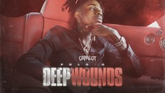 Deep Wounds (Official Audio) - Polo G