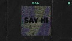 Say Hi (Pseudo Video) - Felguk
