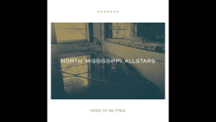 Need to be Free (Audio) - North Mississippi Allstars