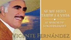 Al Mayor de los Fernández (Cover Audio) - Vicente Fernández