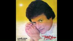 El Más Hermoso Milagro (Official Audio) - Palito Ortega