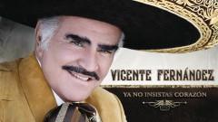 Ya No Insistas Corazón (Cover Audio) - Vicente Fernández
