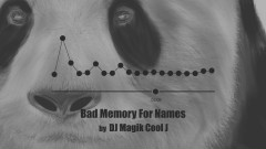 Bad Memory For Names - DJ Magik Cool J