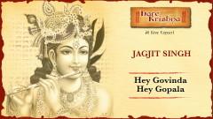 Hey Govinda Hey Gopala (Live) (Pseudo Video) - Jagjit Singh