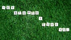 Hey Stupid, I Love You (Lyric Video) - JP Saxe