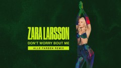 Don't Worry Bout Me (Alle Farben Remix - Audio) - Zara Larsson