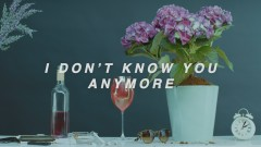 I Don't Know You Anymore (demo) [Lyric Video]