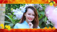 Mộng Chiều Xuân - Hoàng Hoa