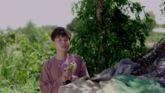 Hoa Bằng Lăng (Remix)