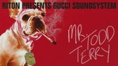 Mr Todd Terry (Audio) - Riton, Gucci Soundsystem