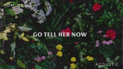 Go Tell Her Now (Acoustic) [Audio]