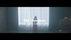 What Love Looks Like (Official Reimagined Video) - Elle Limebear