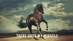 There Goes My Miracle (Lyric Video) - Bruce Springsteen