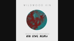 Beauty in Your Brokenness (Kia Love Remix) [Official Audio] - Wildwood Kin