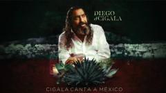 Cenizas (Audio) - Diego El Cigala