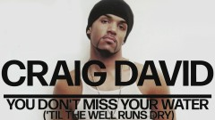 You Don't Miss Your Water ('Til the Well Runs Dry) (Official Audio) - Craig David
