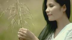 Lạc Vào Thế Giới Anh - Kiwi Ngô Mai Trang