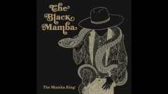 Still I Am Alive (Audio) - The Black Mamba