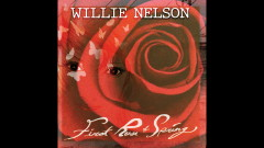 Our Song (Audio) - Willie Nelson
