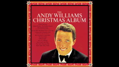 It's the Most Wonderful Time of the Year (Audio) - Andy Williams