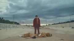 Por Dentro (Video) - Bearoid