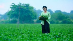 Thương Lắm Mình Ơi - Hà Vân, Vũ Quốc Việt