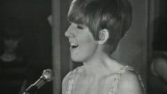 Anyone Who Had A Heart (Live) - Cilla Black