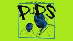 Pups (Audio) - A$AP Ferg, A$AP Rocky