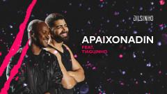 Apaixonadin (DVD Open House Ao Vivo) - Dilsinho, Thiaguinho