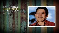 La Guayabalera (Audio Oficial) - Los Hermanos Zuleta